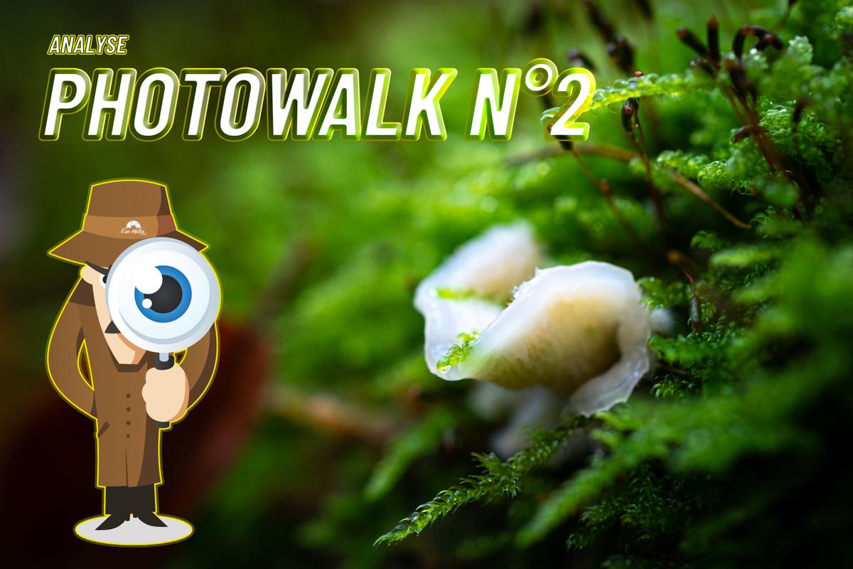 Analyse Photowalk N°2