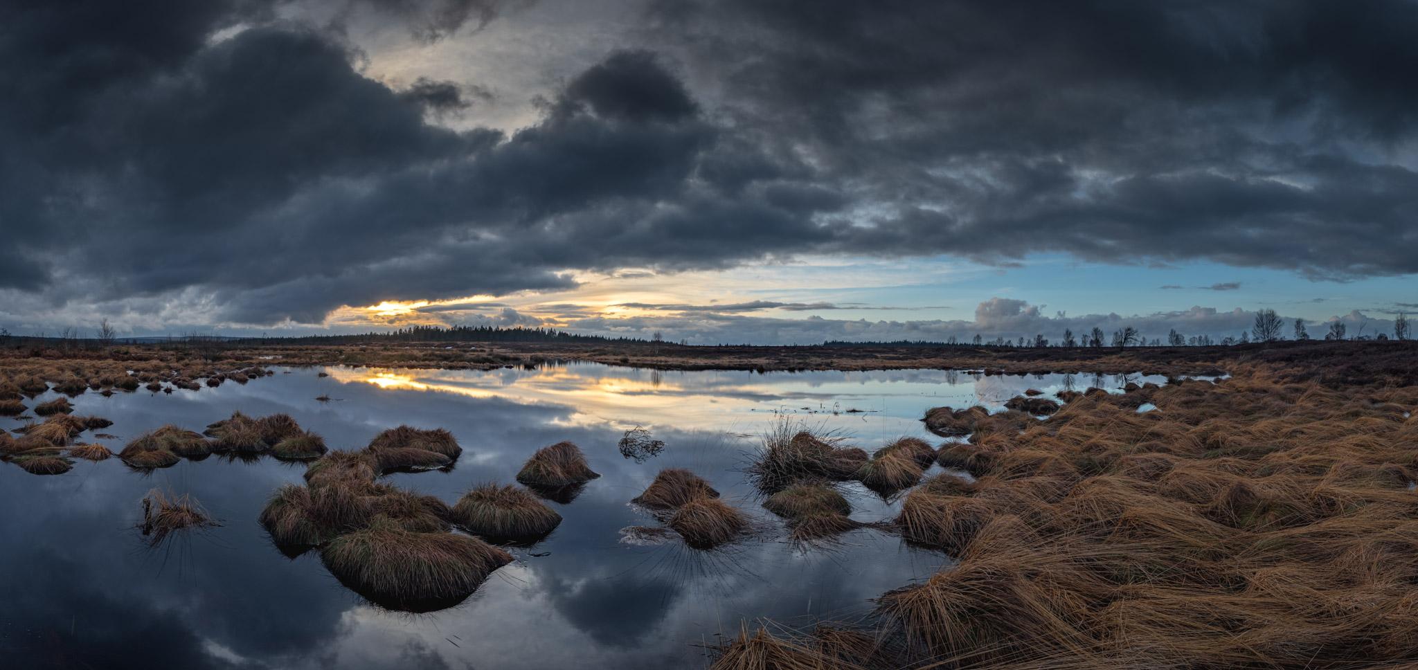 Panorama au milieux des Fagnes avant la tombée de la nuit.